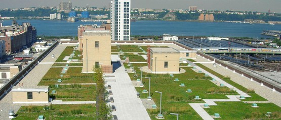 USPS Morgan Processing and Distribution Center Green Roof